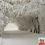 Снег и снежинки