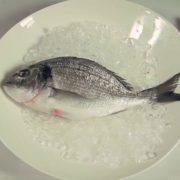 Выбираем правильно рыбу