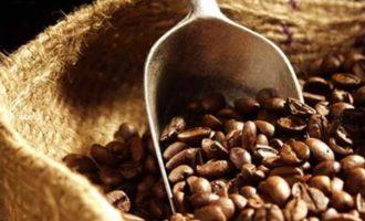 Что мы знаем о кофе