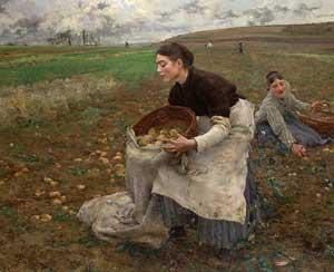 Первый картофель